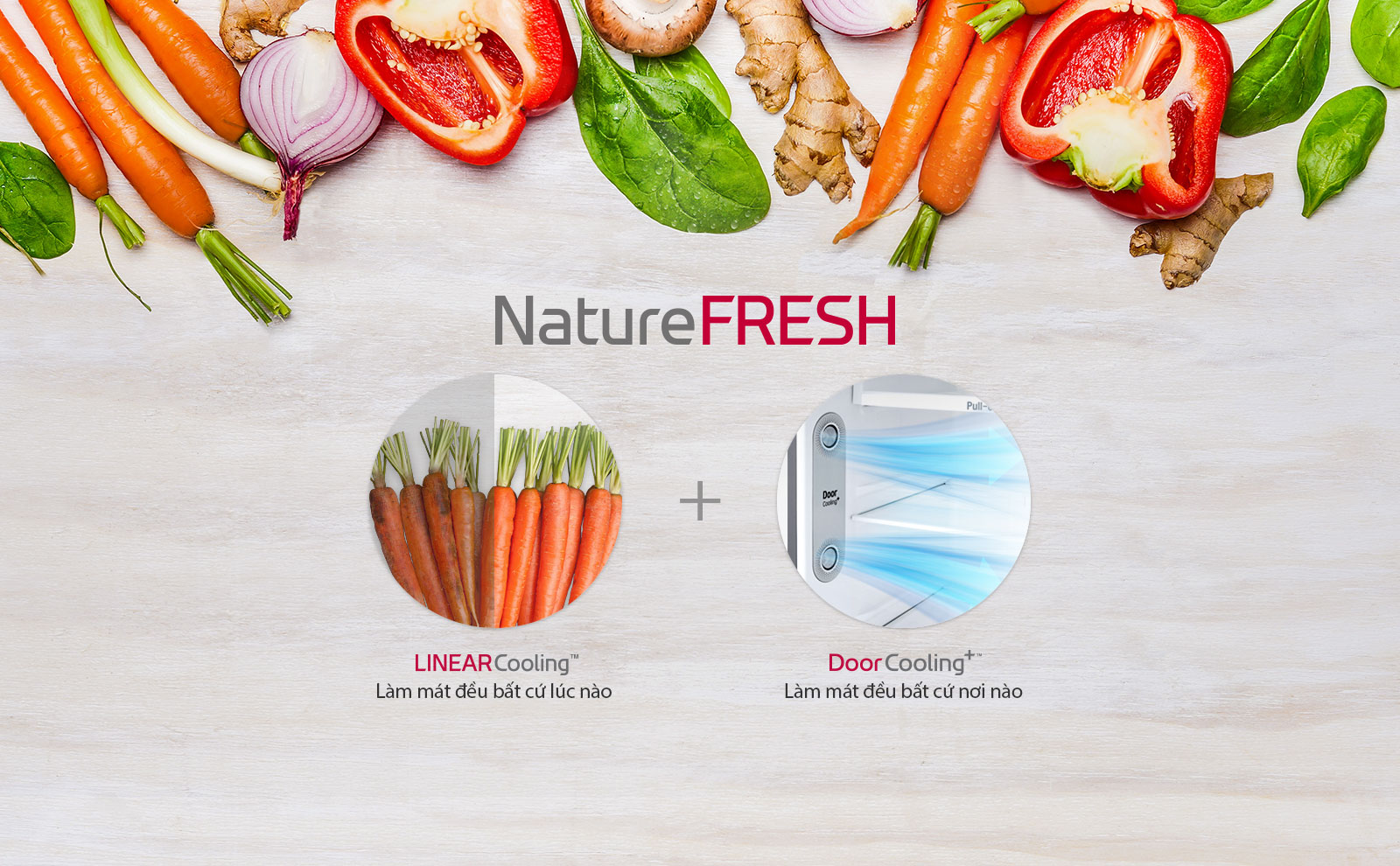 Tủ Lạnh Inverter LG GN-L315PS (315L)