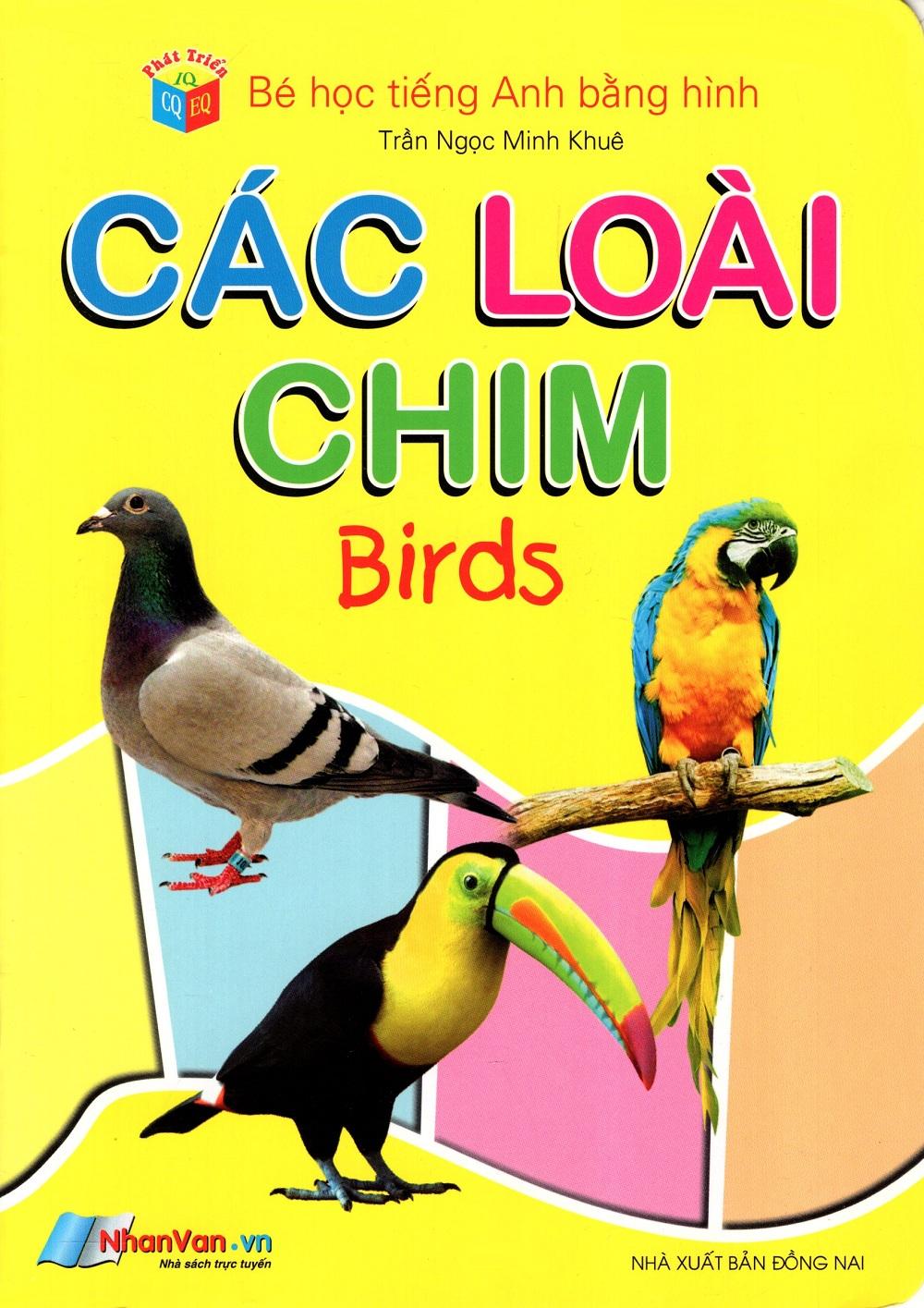 Bé Học Tiếng Anh Bằng Hình: Các Loài Chim