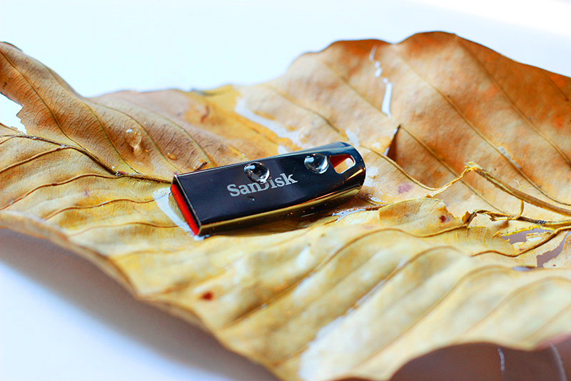 USB 2.0 SanDisk Cruzer Force CZ71 32GB - Hàng Chính Hãng