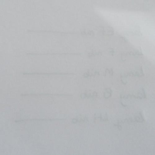 Bút Mực Cao Cấp LAMY Al-star Mod. 26