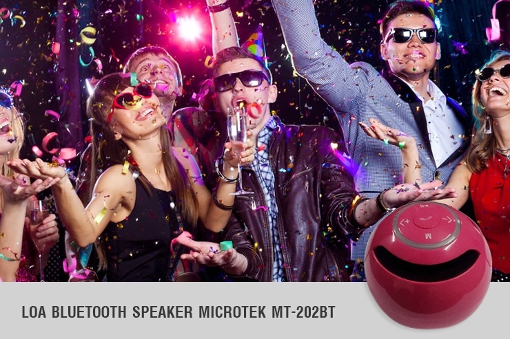 Loa Bluetooth Microtek MT-202BT