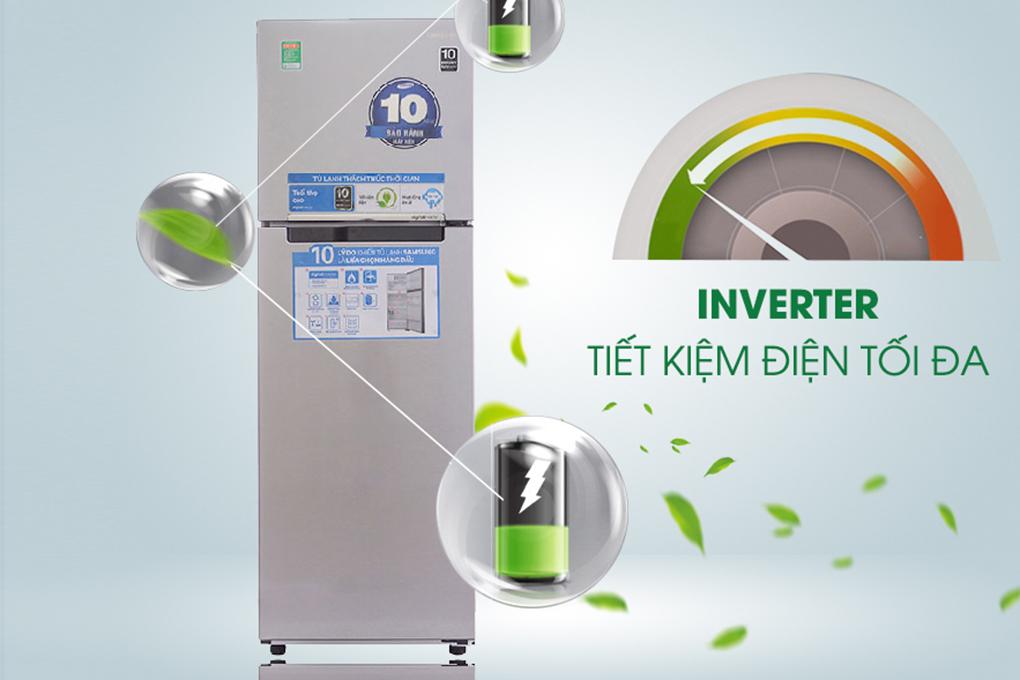 Tủ Lạnh Inverter Samsung RT25FARBDSA (255L)