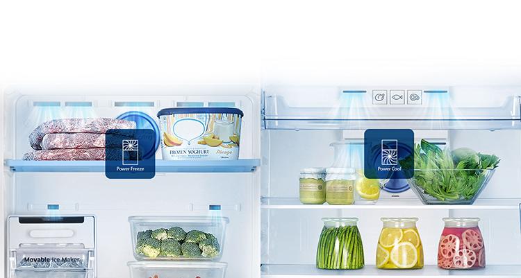 Tủ Lạnh Inverter SamSung RT29K5012S8 (300L)