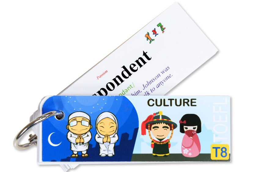 Flashcard Culture Best Quality (T8)