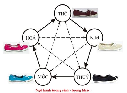 Hướng dẫn chọn size giày Tuvi's