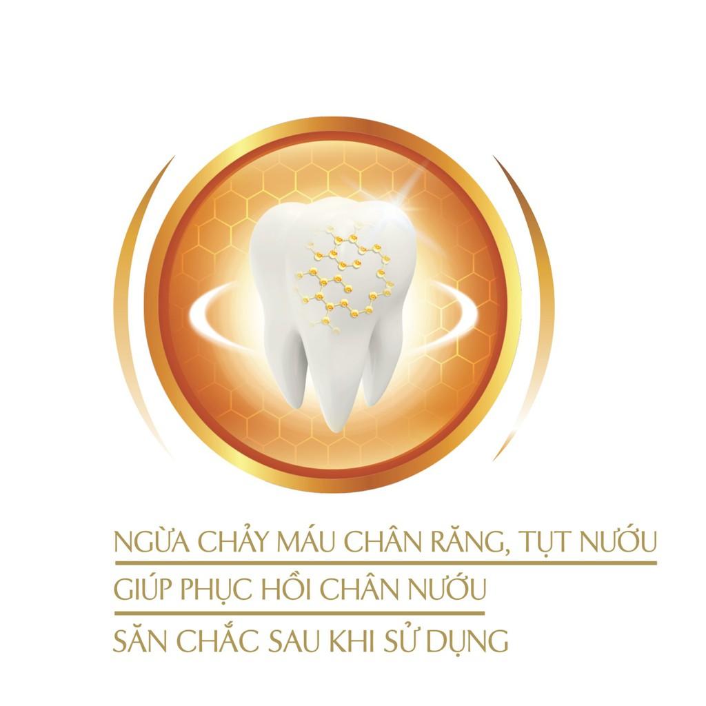 Kem Đánh Răng Lipzo Gum Protect 185 gram Chiết Xuất Thảo Dược