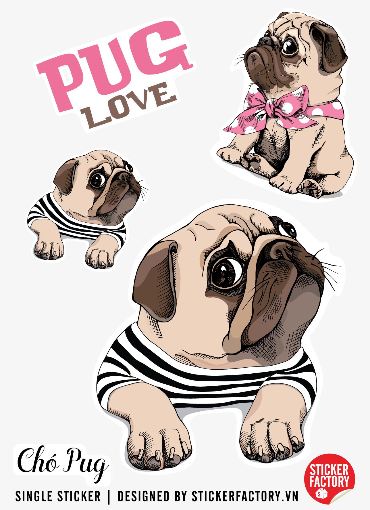Chó Pug - Single Sticker hình dán lẻ