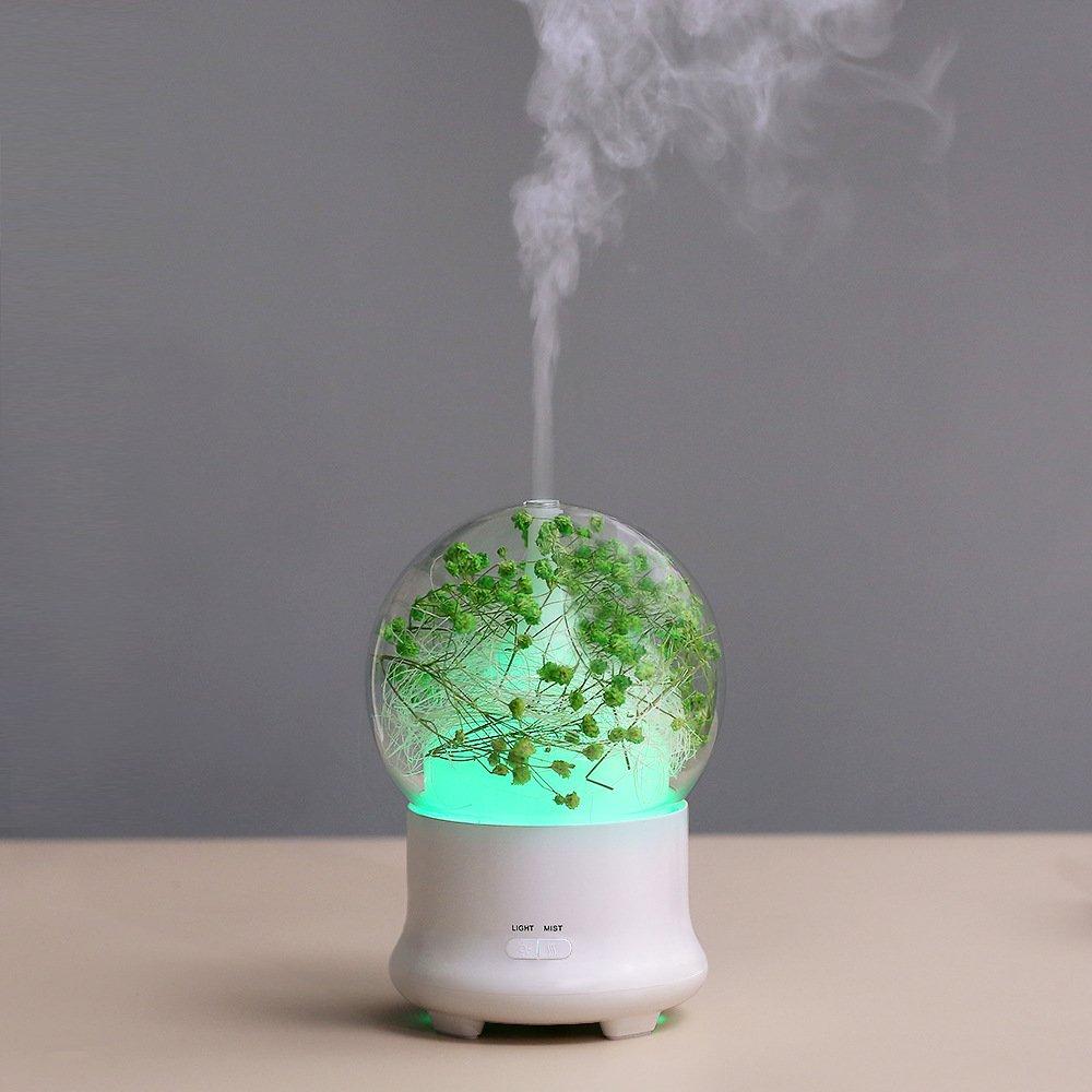 Máy khuếch tán tinh dầu hoa cỏ khô tích hợp led đổi màu ( giao mẫu ngẫu nhiên)