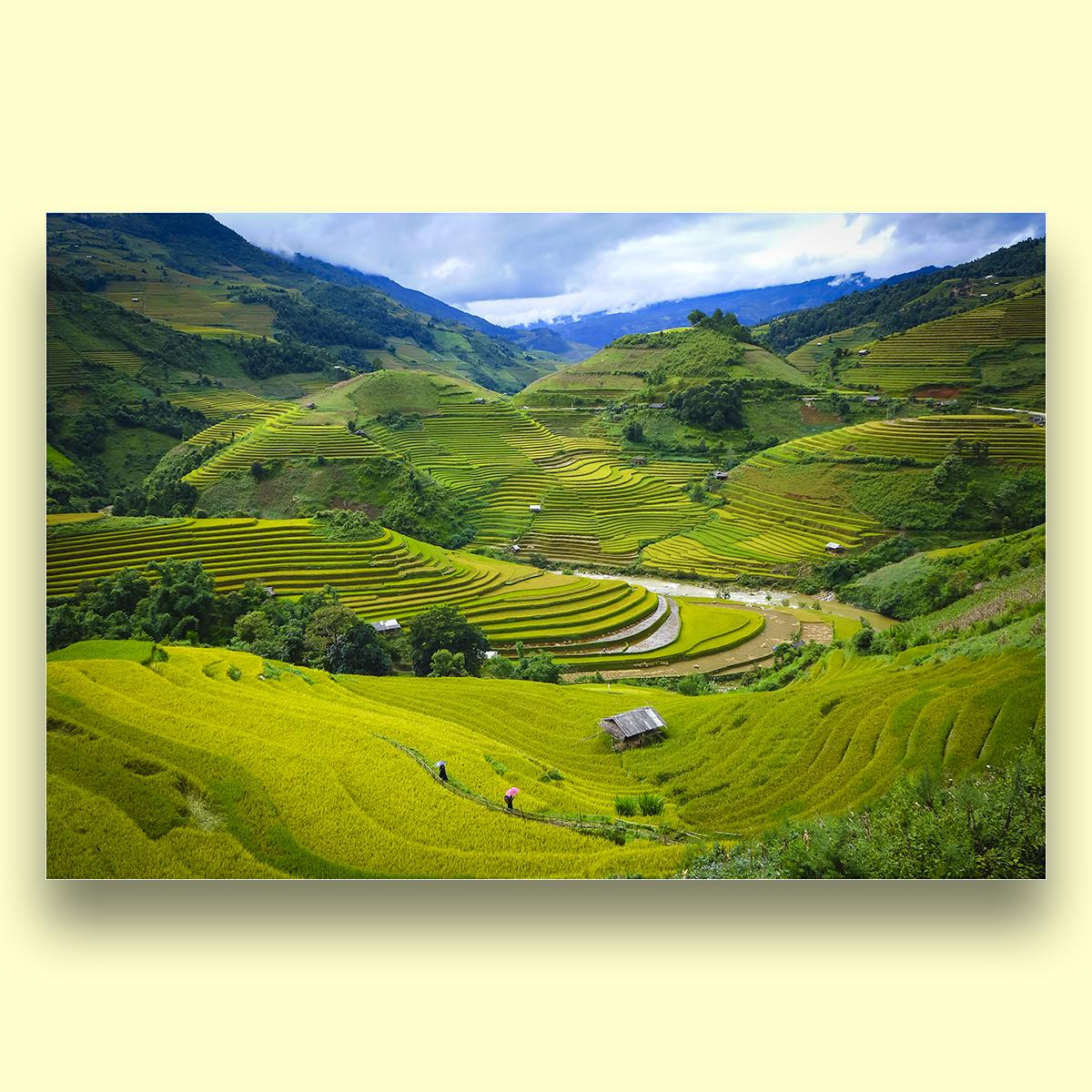 Tranh phong cảnh Việt Nam - In phun UV trên vải CANVAS bọc khung gỗ