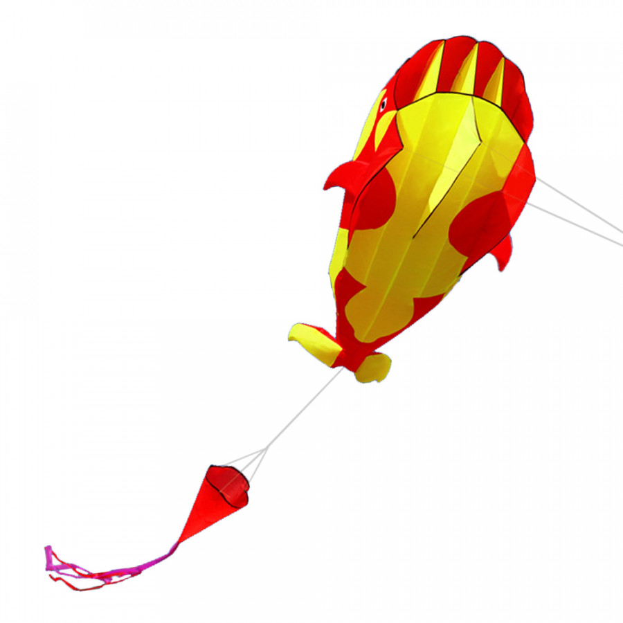 Diều Cá Voi 3D 3 Màu (120 x 215cm)