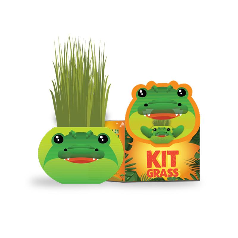 Africa animals Chậu cây trồng Agrioly Grass Kit - hình CÁ SẤU và hạt giống tiêu chuẩn của Úc.