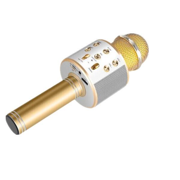 Micro hát karaoke kiêm loa bluetooth