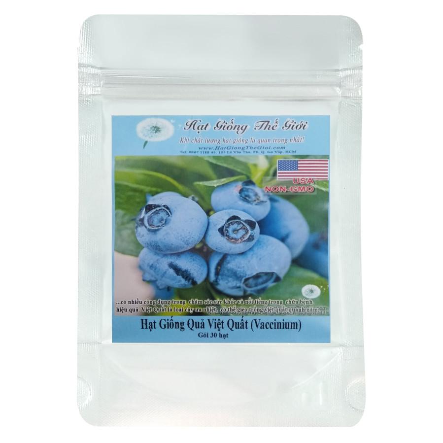 Hạt Giống Quả Việt Quất - Vaccinium corymbosum (30 Hạt)