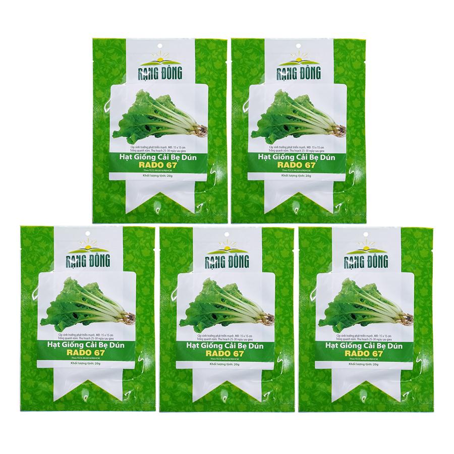 Bộ 5 Túi Hạt Giống Cải Bẹ Dún Rạng Đông (Brassica Juncea) (20g/Túi)