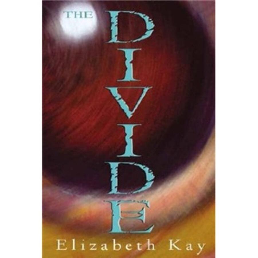 The Divide - 1242637 , 2212482074044 , 62_5286611 , 1784000 , The-Divide-62_5286611 , tiki.vn , The Divide