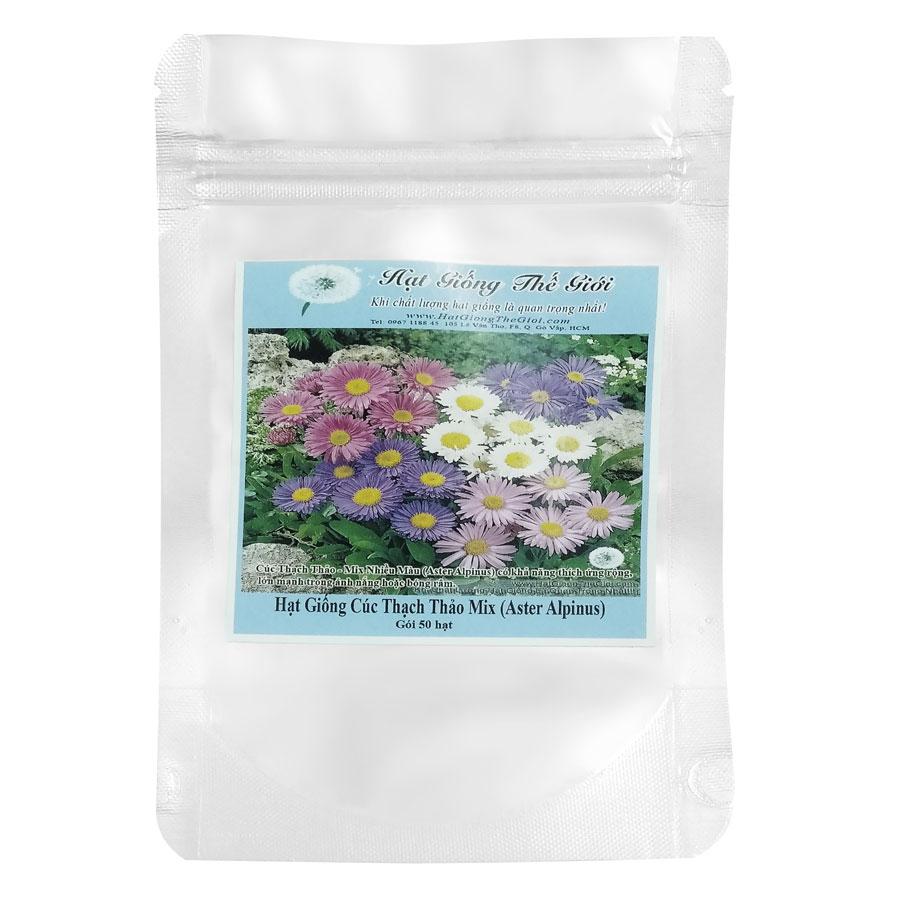 Hạt Giống Cúc Thạch Thảo Mix Nhiều Màu (Aster Alpinus) (50 Hạt)