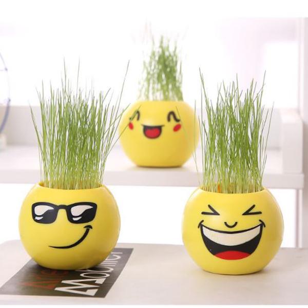Combo 3 chậu trồng cây mini + tặng kèm 3 cây cảnh giả mini (mẫu ngẫu nhiên) - 804601 , 8344409879518 , 62_14248458 , 250000 , Combo-3-chau-trong-cay-mini-tang-kem-3-cay-canh-gia-mini-mau-ngau-nhien-62_14248458 , tiki.vn , Combo 3 chậu trồng cây mini + tặng kèm 3 cây cảnh giả mini (mẫu ngẫu nhiên)