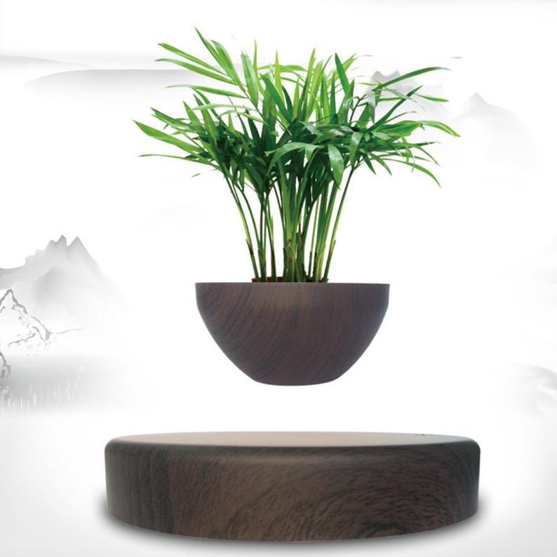 Chậu cây bonsai nam châm lơ lửng trang trí bàn làm việc (Không bao gồm cây) - 1520938 , 8744499025503 , 62_14990188 , 1599000 , Chau-cay-bonsai-nam-cham-lo-lung-trang-tri-ban-lam-viec-Khong-bao-gom-cay-62_14990188 , tiki.vn , Chậu cây bonsai nam châm lơ lửng trang trí bàn làm việc (Không bao gồm cây)