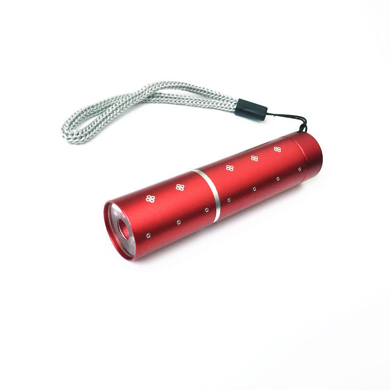 Đèn Pin Mini Hình Thỏi Son (1.5V) (30g)