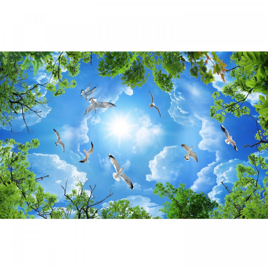 Tranh dán trần 3d bầu trời TN58 - 5079851 , 7367731471695 , 62_16055698 , 600000 , Tranh-dan-tran-3d-bau-troi-TN58-62_16055698 , tiki.vn , Tranh dán trần 3d bầu trời TN58