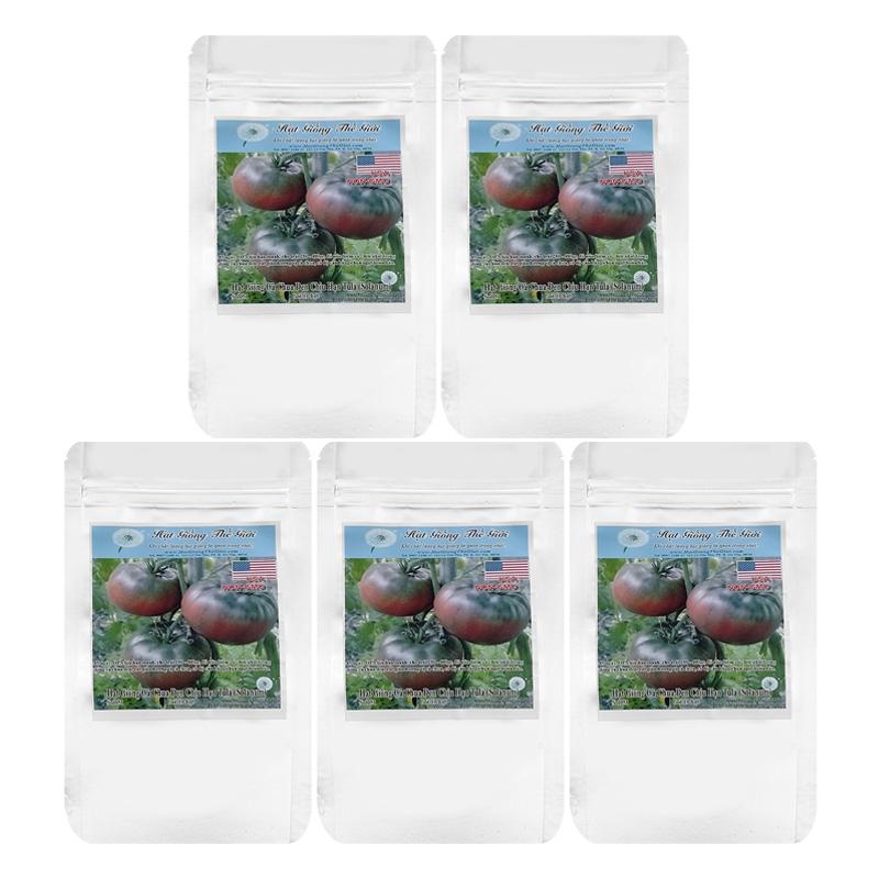 Bộ 5 túi 10 Hạt Giống Cà Chua - Đen Chịu Hạn 140KCD Tula (Solanum Lycopersicum)