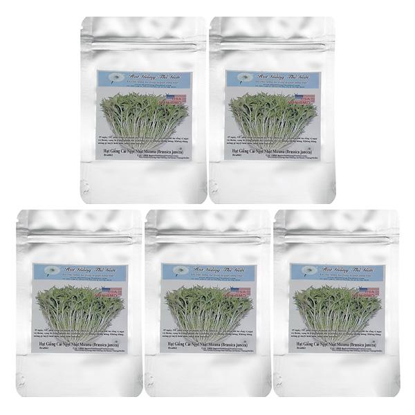 Bộ 5 Túi 1000 Hạt Giống Cải Ngọt Nhật - Mizuna (Brassica Juncea)