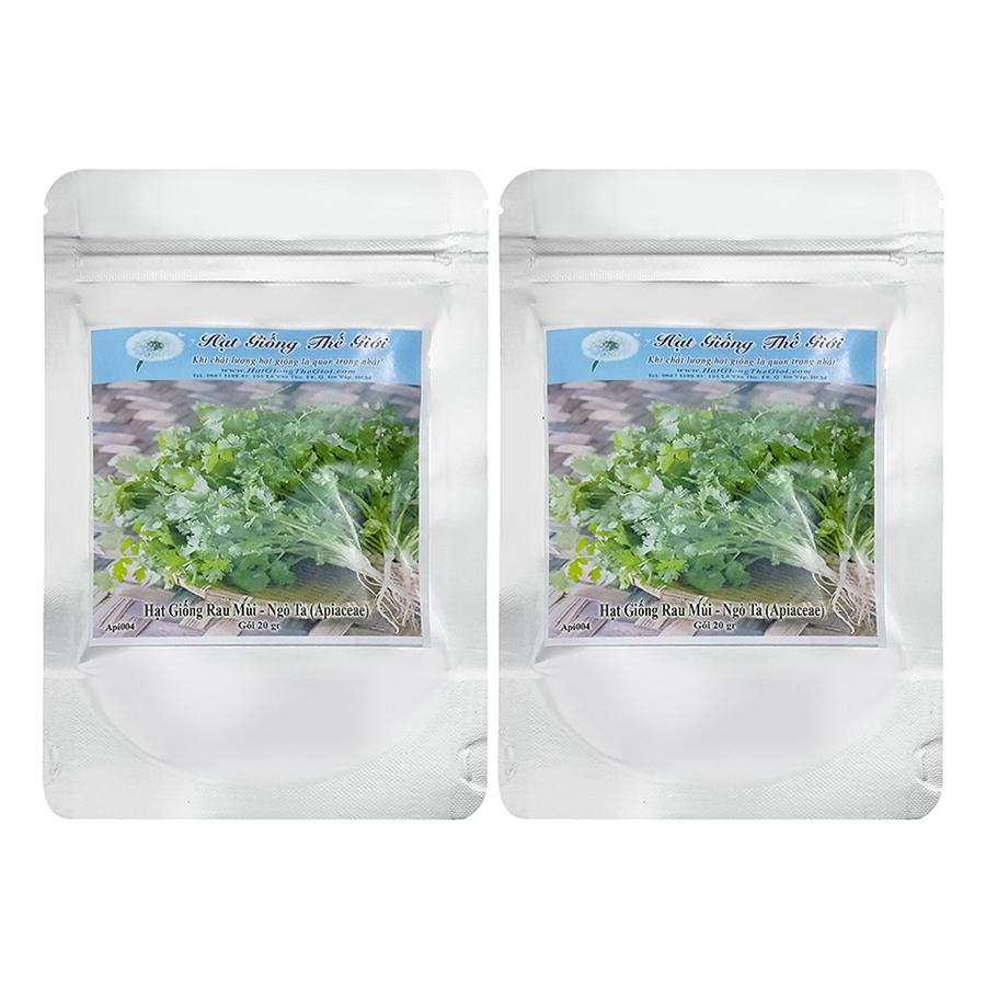 Bộ 2 Túi Hạt Giống Rau Mùi - Ngò Ta (Apiaceae) (20g x 2)
