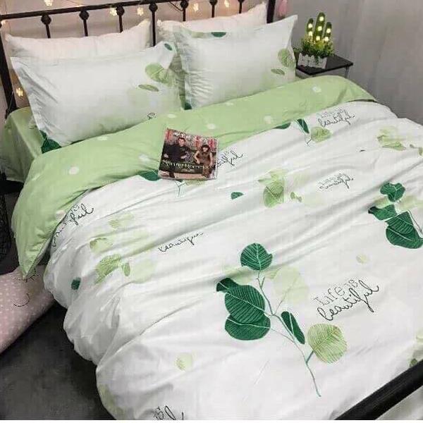 Bộ Chăn Ga Gối Cotton Korea chần bông NS103