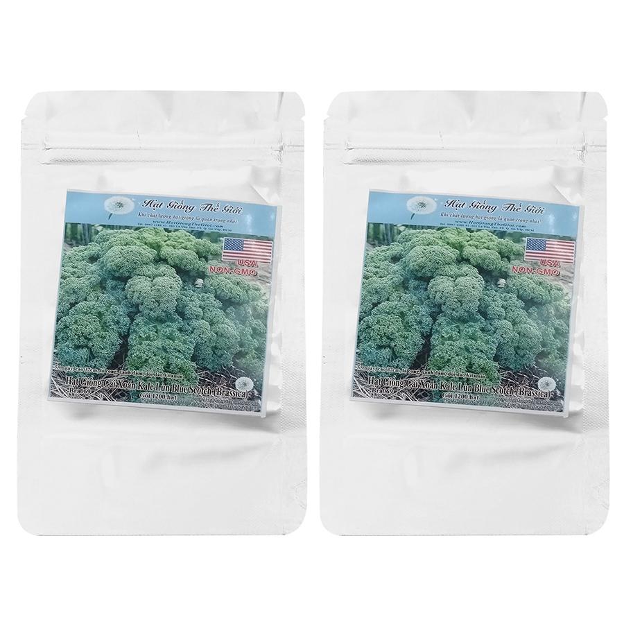 Bộ 2 Túi Hạt Giống Cải Xoăn Kale - Xoăn Lùn Blue Scotch (Brassica Oleracea, Acephala) (1200Hạt x 2)