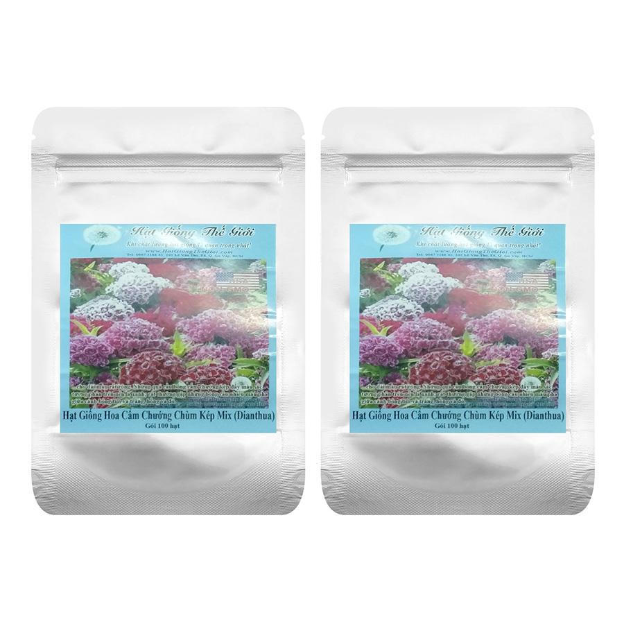 Bộ 2 Túi Hạt Giống Hoa Cẩm Chướng Chùm - Kép Mix William (Dianthus barbatus) - Gói 100 Hạt