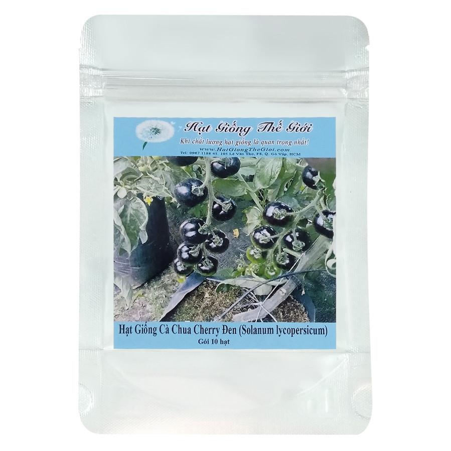 Hạt Giống Cà Chua Cherry Đen 100gr - Solanum lycopersicum (10 Hạt)