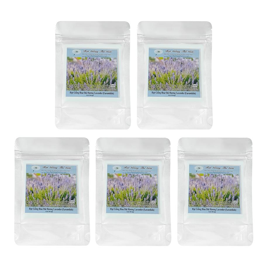 Bộ 5 Túi Hạt Giống Hoa Oải Hương Lavender 50 Hạt