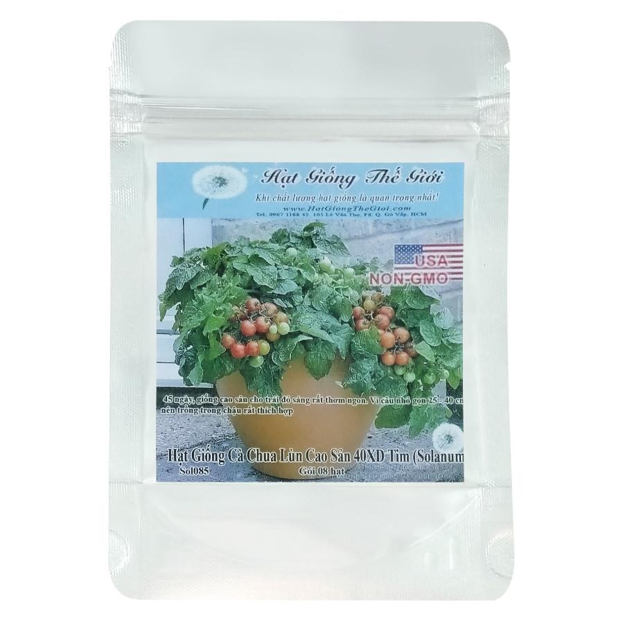 Hạt Giống Cà Chua Lùn Cao Sản 40XD Tim - Solanum Lycopersicum (8 Hạt)