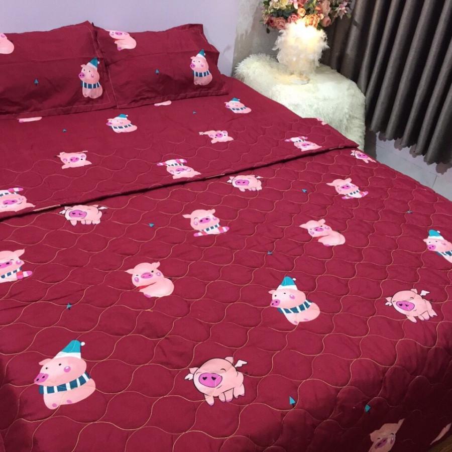 Bộ Chăn Ga Gối Cottong Poly Hè Thu 5 Món Lợn Đỏ
