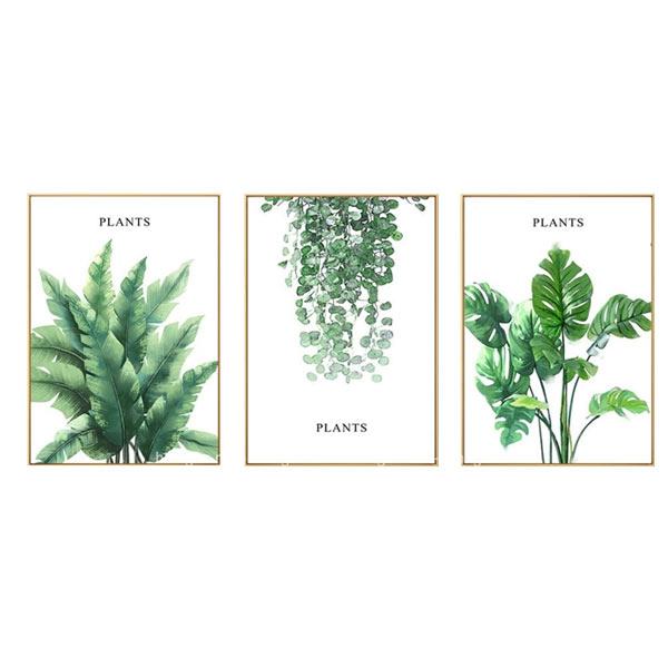 Tranh Bộ Trang Trí Plants VM34 (40 x 60 cm)