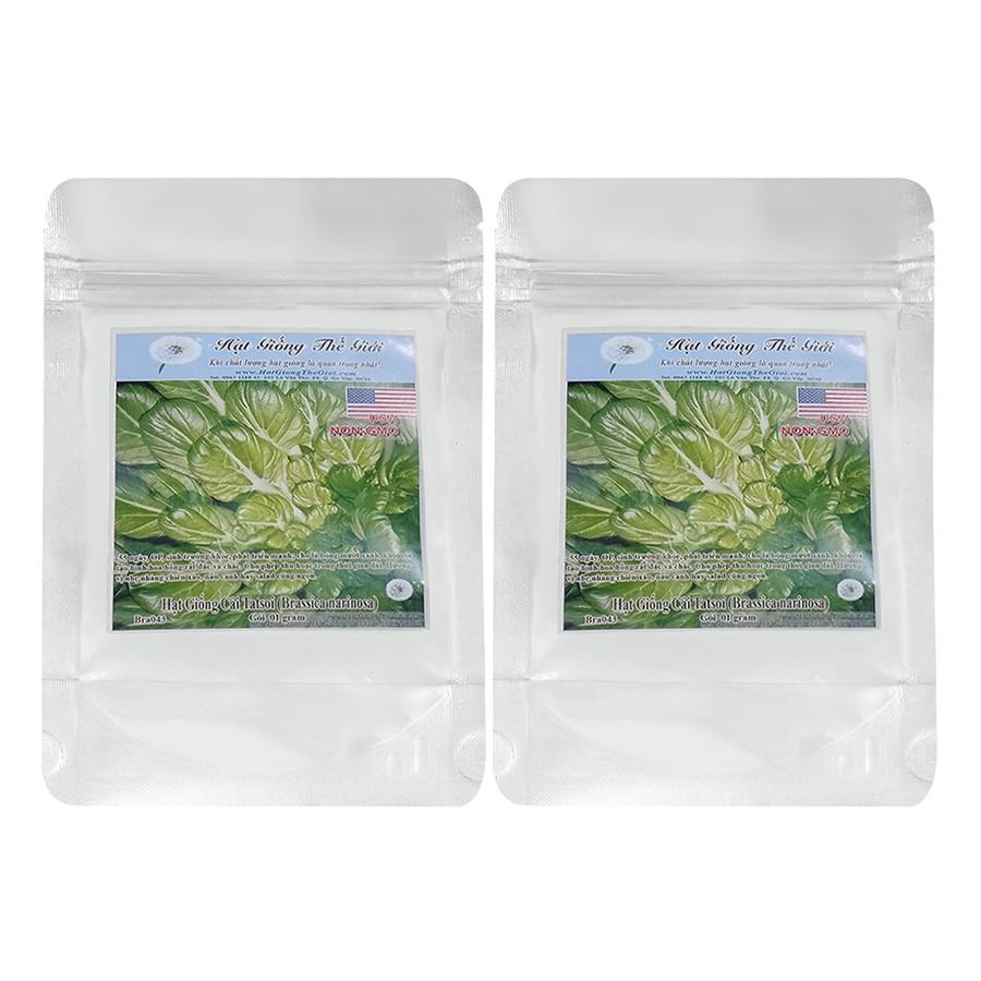 Bộ 2 Túi Hạt Giống Cải Hoa Hồng Tatsoi (Brassica Narinosa) (1g x 2)