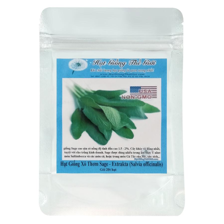 Hạt Giống Xô Thơm Sage - Salvia officinalis (20 Hạt)