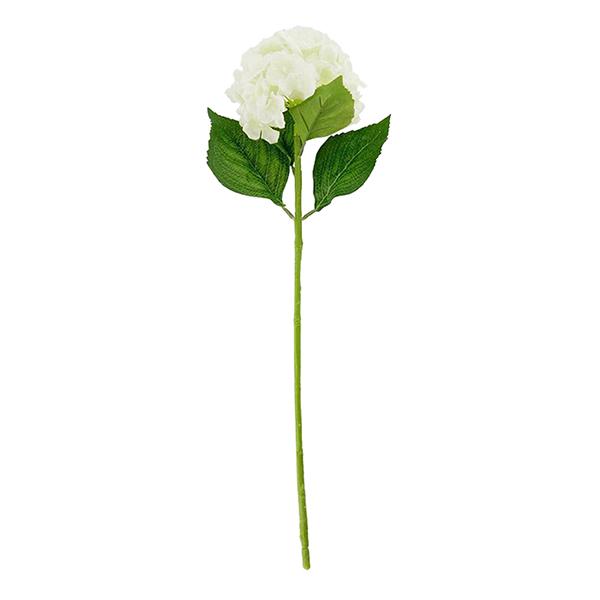 Hoa Tú Cầu Flower Bouquet
