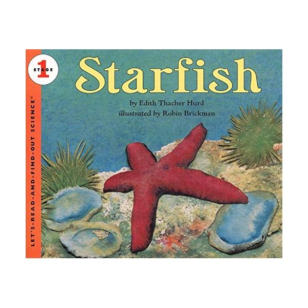Lrafo L1: Starfish