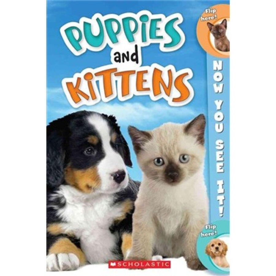 Now You See It! Puppies and Kittens