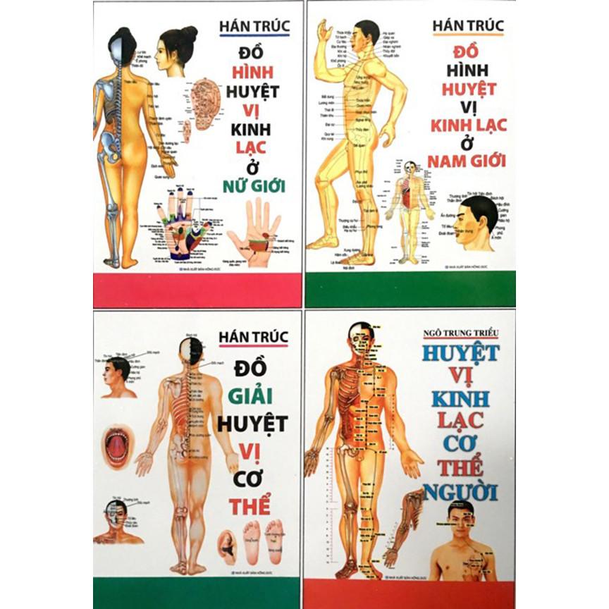Huyệt vị kinh lạc cơ thể người (Huyệt vị - Đồ giải - Đồ hình Nam nữ) - 18652034 , 9563621851532 , 62_23423447 , 436000 , Huyet-vi-kinh-lac-co-the-nguoi-Huyet-vi-Do-giai-Do-hinh-Nam-nu-62_23423447 , tiki.vn , Huyệt vị kinh lạc cơ thể người (Huyệt vị - Đồ giải - Đồ hình Nam nữ)