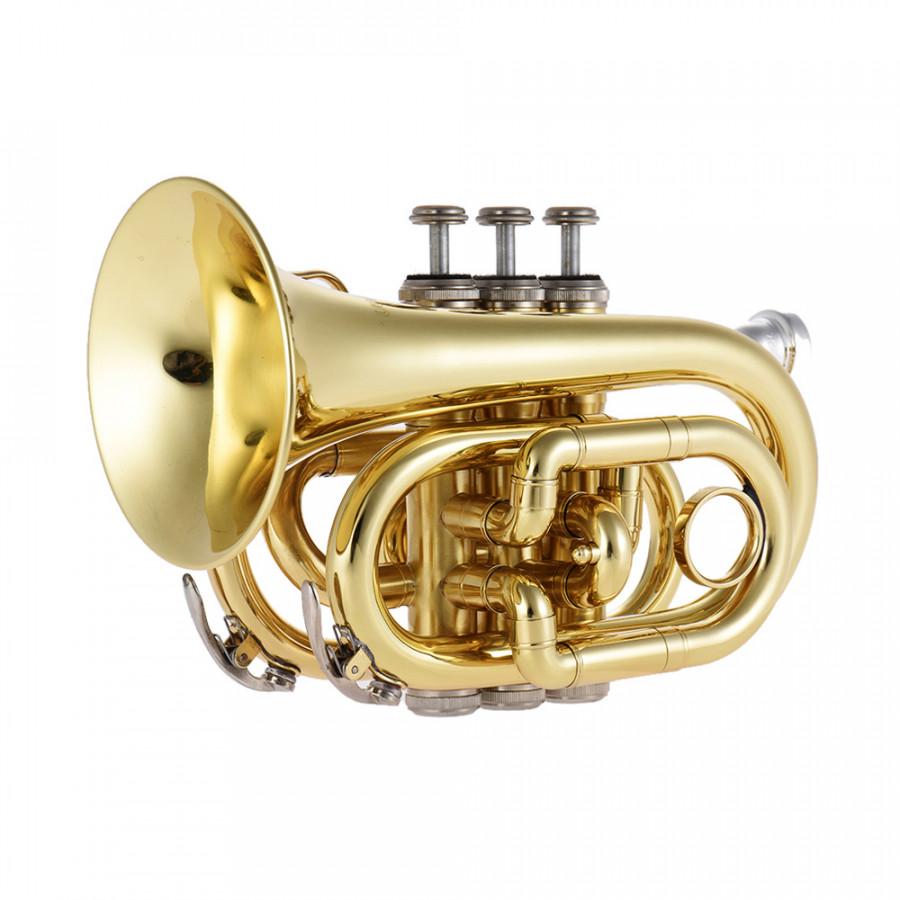 Kèn Trumpet Bb Mini Kèm Túi Đựng Ammoon (25,5 x 15cm) - 9552201 , 8651394013378 , 62_14373860 , 2988000 , Ken-Trumpet-Bb-Mini-Kem-Tui-Dung-Ammoon-255-x-15cm-62_14373860 , tiki.vn , Kèn Trumpet Bb Mini Kèm Túi Đựng Ammoon (25,5 x 15cm)