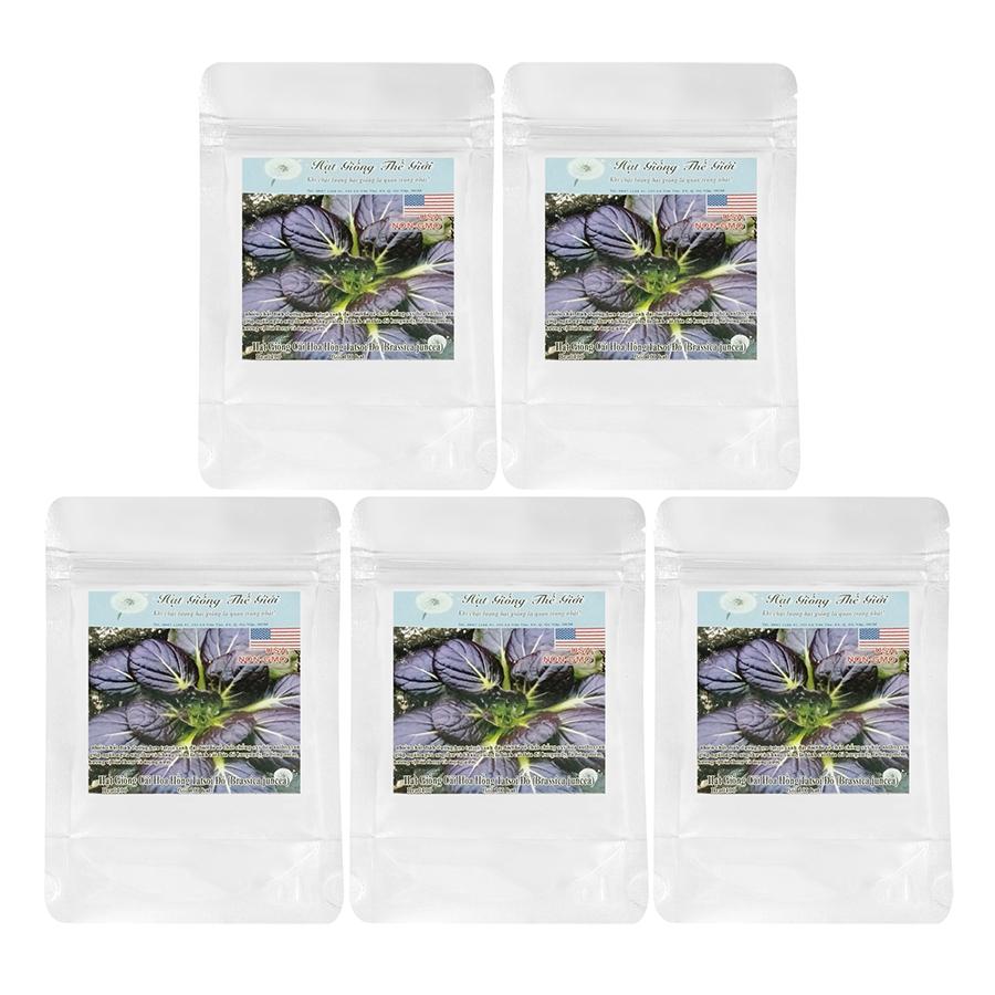Bộ 5 Túi Hạt Giống Cải Hoa Hồng Tatsoi (Brassica Narinosa) (1g/Túi)