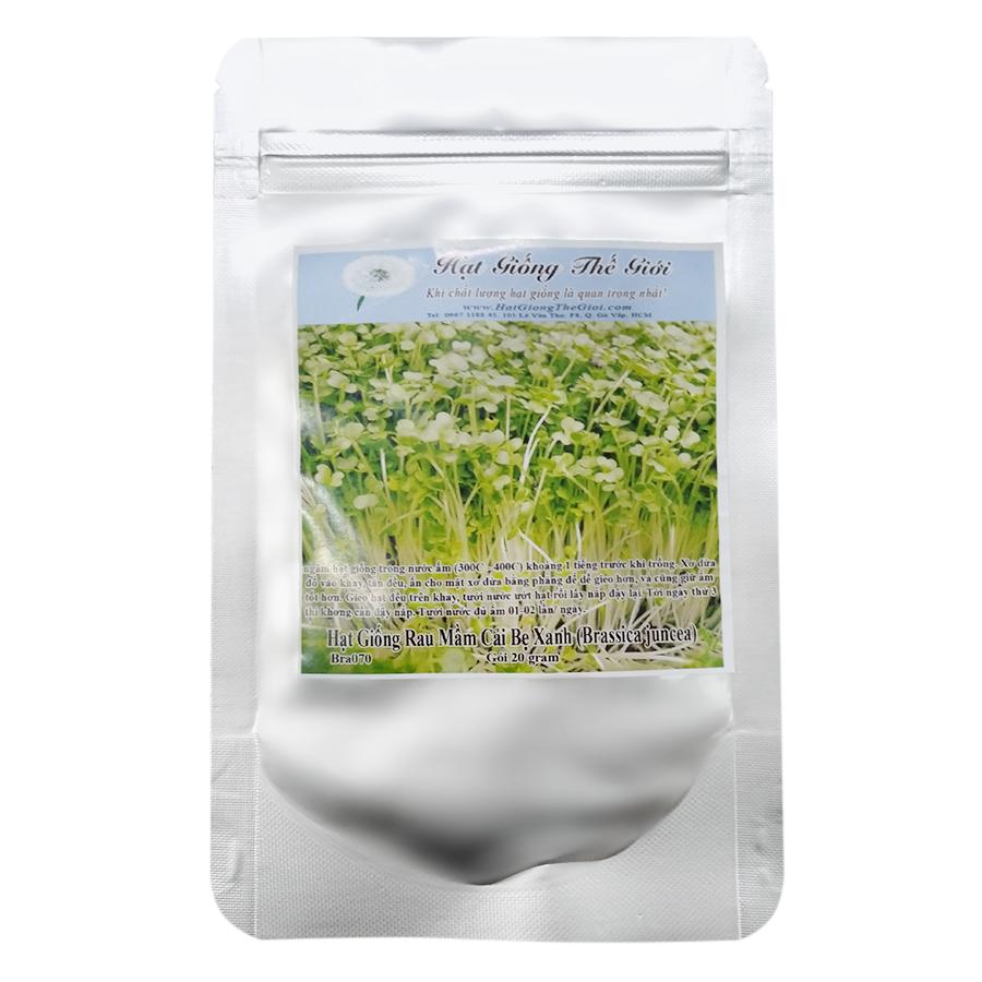 Hạt Giống Rau Mầm - Cải Thìa Brassica rapa chinensis (20g)
