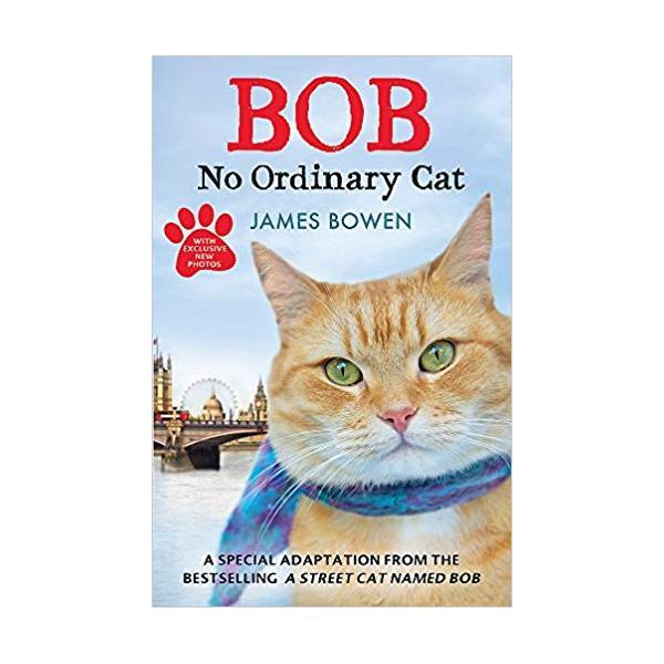 Bob: No Ordinary Cat Paperback