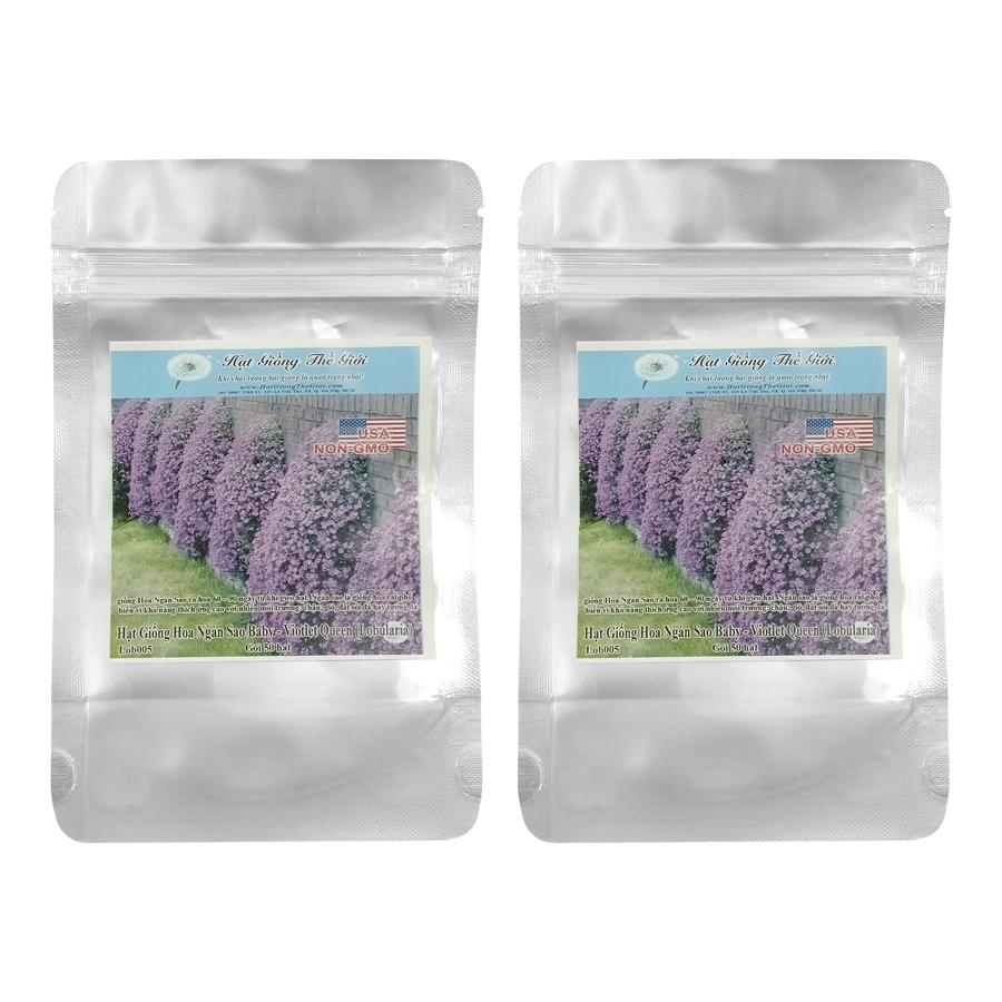 Bộ 2 Túi 50H Hạt Giống Hoa Ngàn Sao Baby - Violet Queen (Lobularia Maritima)