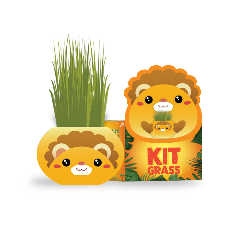 Africa animals Chậu cây trồng Agrioly Grass Kit - hình SƯ TỬ và hạt giống tiêu chuẩn của Úc.