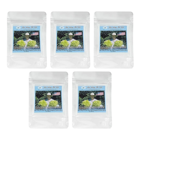 Bộ 5 Túi Hạt Giống Xà Lách - Siêu Ngon Chịu Nhiệt B.Simpson (Lactuca sativa) 1500 Hạt