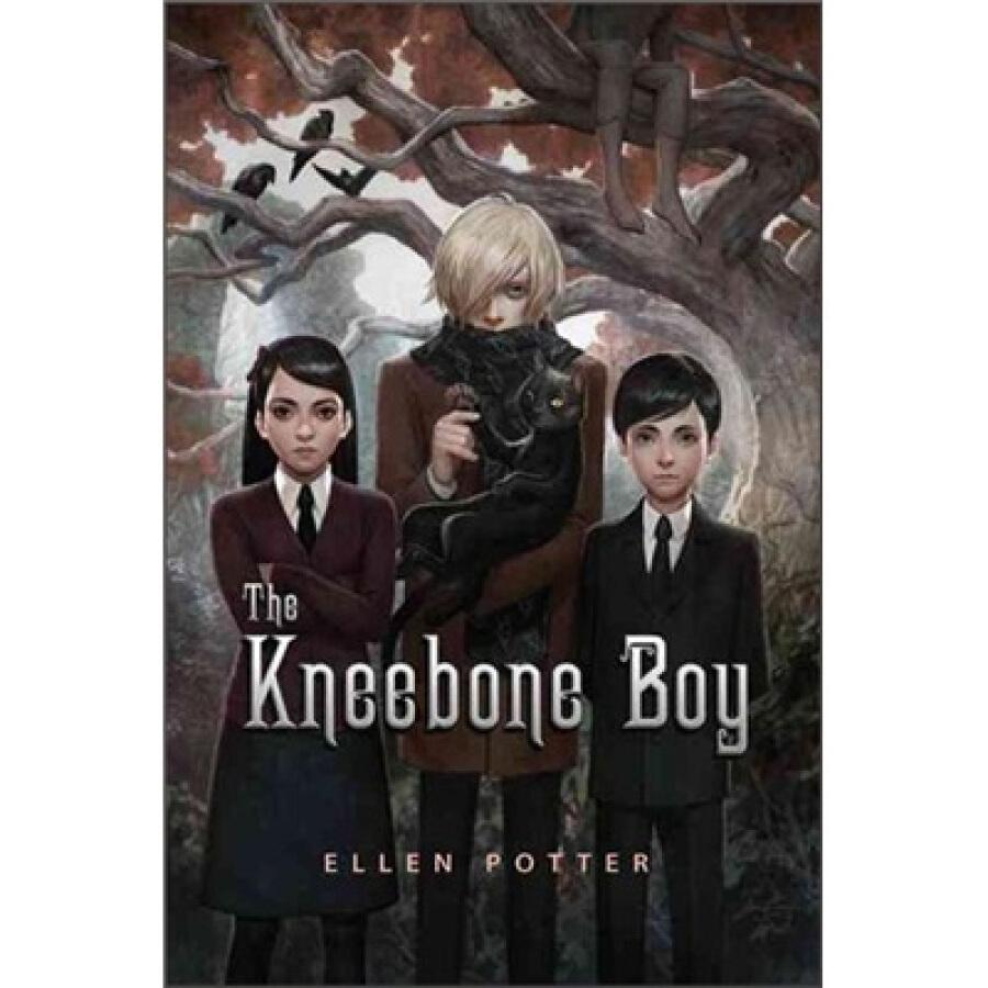 The Kneebone Boy - 1317684 , 5607451558309 , 62_5304221 , 382000 , The-Kneebone-Boy-62_5304221 , tiki.vn , The Kneebone Boy