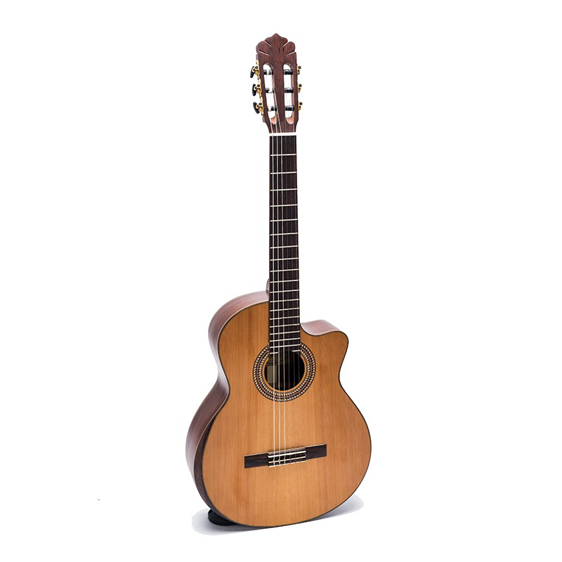 Đàn Guitar Classic DC450J guitar Việt Nam